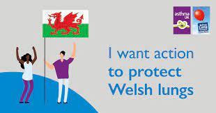 Welsh language information